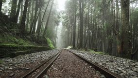 Περπατώντας κατά μήκος του παλαιού παραμελημένου σιδηροδρόμου στο φυσικό δάσος περιοχής Alishan με την υδρονέφωση, την ελαφριά ομ απόθεμα βίντεο