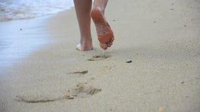 Περπατώντας στην άμμο, απόθεμα βίντεο
