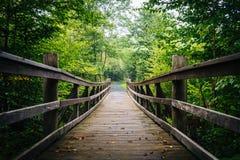 Περπατώντας τη γέφυρα στο ίχνος Limberlost σε Shenandoah εθνικό PA Στοκ Εικόνες