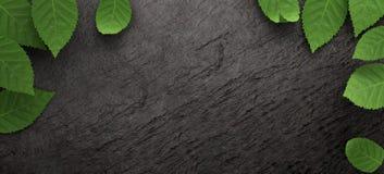 Πεσμένα φύλλα στο σκοτεινό υπόβαθρο πλακών Ζωηρόχρωμα πεσμένα φθινόπωρο φύλλα Στοκ Εικόνα