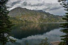 Πεσμένη λίμνη φύλλων κοντά στη λίμνη Tahoe στοκ εικόνες