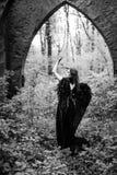 Πεσμένος άγγελος με τα μαύρα φτερά Στοκ φωτογραφία με δικαίωμα ελεύθερης χρήσης