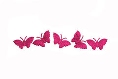 πεταλούδα ανασκόπησης που απομονώνεται Στοκ Φωτογραφία
