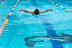Πεταλούδα που κολυμπά στο waterpool στοκ φωτογραφία με δικαίωμα ελεύθερης χρήσης