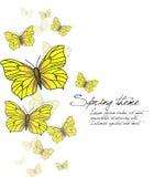 Πεταλούδες άνοιξη -   Απεικόνιση αποθεμάτων