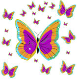 πεταλούδες αρκετά στοκ φωτογραφία