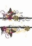 πεταλούδες βρώμικες Στοκ Εικόνα