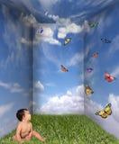 πεταλούδες μωρών που αν&alpha Στοκ φωτογραφία με δικαίωμα ελεύθερης χρήσης
