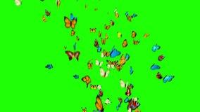 Πεταλούδες που πετούν σε ένα πράσινο υπόβαθρο απόθεμα βίντεο