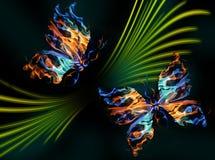 πεταλούδες φλογερές Στοκ Εικόνα