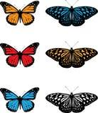 πεταλούδες Στοκ Φωτογραφία