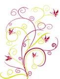 πεταλούδες Στοκ φωτογραφίες με δικαίωμα ελεύθερης χρήσης