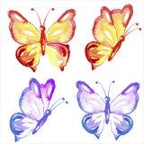 Πεταλούδες Watercolor καθορισμένες απομονωμένες στο λευκό Στοκ Εικόνες