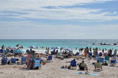 Πεταλοειδής παραλία κόλπων στις Βερμούδες Στοκ Εικόνες