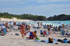 Πεταλοειδής παραλία κόλπων στις Βερμούδες Στοκ φωτογραφία με δικαίωμα ελεύθερης χρήσης