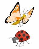Πεταλούδα και ladybug Στοκ εικόνα με δικαίωμα ελεύθερης χρήσης