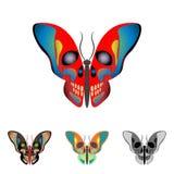 Πεταλούδα με ένα κρανίο στα φτερά Στοκ Εικόνες