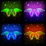 Πεταλούδα νέου απεικόνιση αποθεμάτων