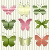 πεταλούδα ριγωτή Στοκ Φωτογραφίες