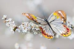 Πεταλούδα στο άνθος Στοκ εικόνα με δικαίωμα ελεύθερης χρήσης