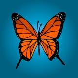 Πεταλούδα χρώματος στο μπλε υπόβαθρο Στοκ φωτογραφία με δικαίωμα ελεύθερης χρήσης