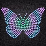 Πεταλούδα Απεικόνιση αποθεμάτων