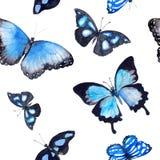 πεταλούδες Άνευ ραφής ανασκόπηση watercolor Στοκ Φωτογραφία