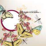 πεταλούδες ανασκόπησης floral Στοκ εικόνα με δικαίωμα ελεύθερης χρήσης
