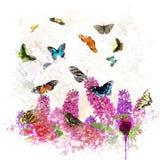 Πεταλούδες και λουλούδια Στοκ φωτογραφίες με δικαίωμα ελεύθερης χρήσης