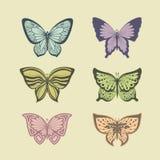 πεταλούδες που τίθεντα& ελεύθερη απεικόνιση δικαιώματος