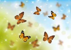Πεταλούδες τρισδιάστατες Στοκ Εικόνες