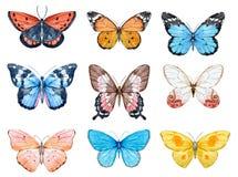 Πεταλούδες Watercolor καθορισμένες ελεύθερη απεικόνιση δικαιώματος