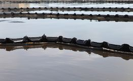 πετρέλαιο βραχιόνων στοκ φωτογραφία