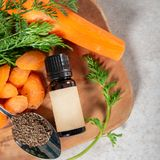 Πετρέλαιο σπόρου καρότων Καθαρός, φυσικός Aromatherapy, πετρέλαιο βάσεων μασάζ, Sunscreen στοκ φωτογραφίες με δικαίωμα ελεύθερης χρήσης