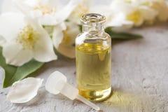 Πετρέλαιο jasmine Aromatherapy με jasmine το πετρέλαιο jasmine λουλουδιών διαφορών ανασκόπησης συμπαθητικό εποχιακό θέμα Στοκ Εικόνα