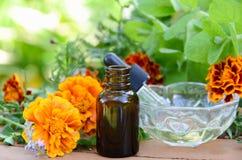 Πετρέλαια μασάζ με τα χορτάρια και marigold Στοκ Εικόνες