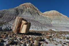 Πετρώνοντας δασικός ξύλινος βράχος Στοκ Εικόνες