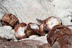 Πετρώνω ξύλινο κούτσουρο που βάζει στην έρημο στοκ φωτογραφίες με δικαίωμα ελεύθερης χρήσης