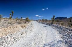 Πετρώδης κενός δρόμος στο εθνικό πάρκο κοιλάδων θανάτου σε Καλιφόρνια, Η.Ε Στοκ εικόνες με δικαίωμα ελεύθερης χρήσης