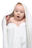 πετσέτα κουτσούβελων κά& Στοκ Εικόνα