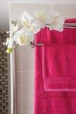 Πετσέτες λουτρών Στοκ Εικόνες