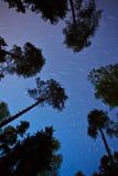 πετώντας αστέρια Στοκ εικόνα με δικαίωμα ελεύθερης χρήσης