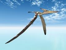 Πετώντας δεινόσαυρος Pteranodon Στοκ Εικόνες