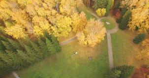 Πετώντας επάνω από τα ζωηρόχρωμα φύλλα φθινοπώρου τα δέντρα μέσα φιλμ μικρού μήκους