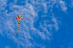 Πετώντας ζωηρόχρωμος ικτίνος Στοκ εικόνες με δικαίωμα ελεύθερης χρήσης