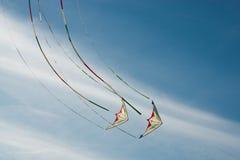 Πετώντας ικτίνοι Στοκ Εικόνες