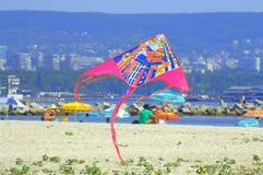 Πετώντας ικτίνος στην παραλία Στοκ φωτογραφία με δικαίωμα ελεύθερης χρήσης