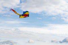 Πετώντας ικτίνος στον αέρα Στοκ εικόνα με δικαίωμα ελεύθερης χρήσης