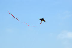 Πετώντας ικτίνος στον ουρανό Στοκ Εικόνες