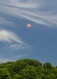 πετώντας ικτίνος Στοκ Φωτογραφίες
